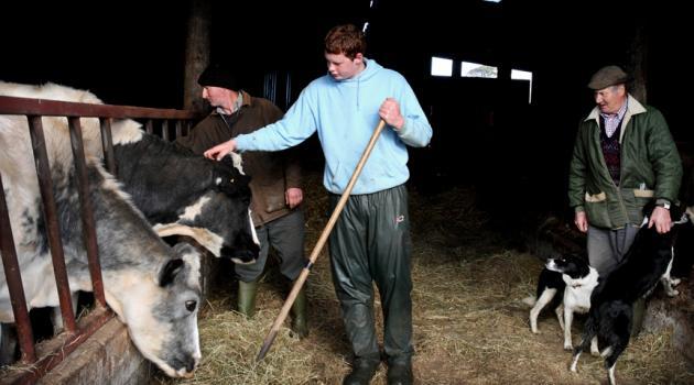 dairy_farmer